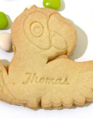 biscuit sablé perroquet