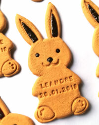 "Biscuit ""lapin"""