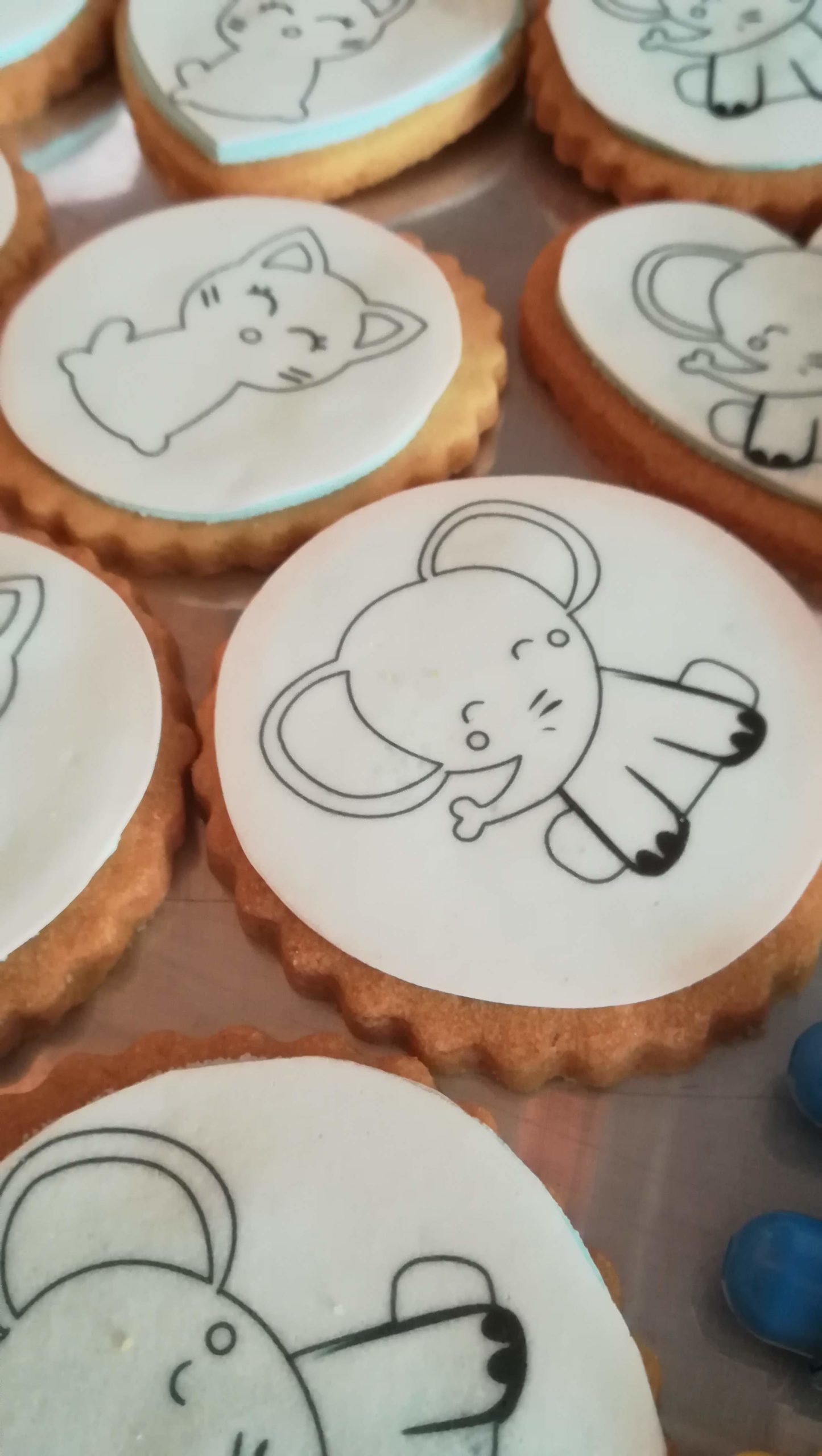 biscuit-coloriage-elephant-animation-bapteme